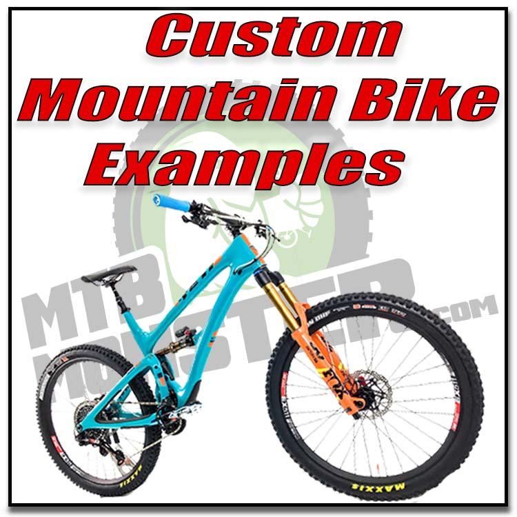 Custom Mountain Bike Examples